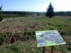 200705 MD Plateau Saint-Hubert ZHIB Vallée de la Basseille