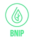 20160511-BNIP-logo_productie-CMYK-outline-01