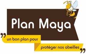 accueil_plan_maya