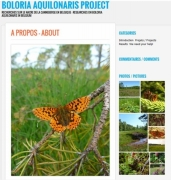 Boloria_aquilonaris project