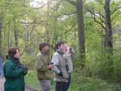 ornithologues à l'oeuvre