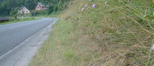 Effets de la fauche sur les bords des routes