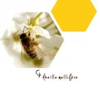 FAQ 3 abeille mellifère