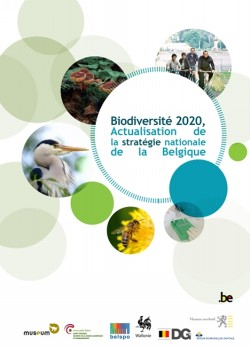 Strategie Biodiversite 2020