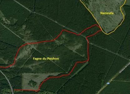 Plateau des Tailles - Fagne du pouhon avant 2007