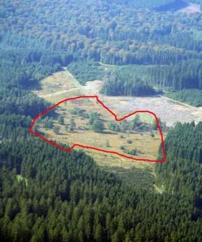 Vue aérienne SGIB Fange Tailsus - 2010