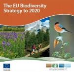 biodiversity_Strategy_2020