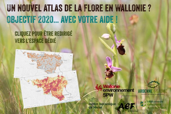 PAGE FLORE Atlas-flore_espace_dedie_web