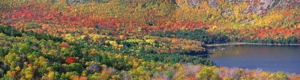 Représentation de la variabilité de la biodiversite