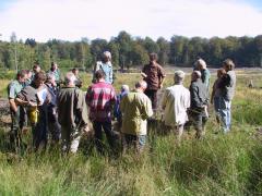 Visite de terrain dans le projet LIFE Saint-Hubert