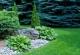 jardin d'amateur