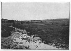 Jean_Massart_1912_fig_322_Pont de la Vecquée à Hockai 1896