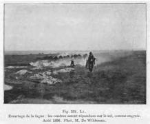 Jean Massart 1912 fig 332 Essartage de la Fagne. LEs cendres seront répandues sur la fagne, comme engrais.  Aout 1896. Photo de Wildeman.