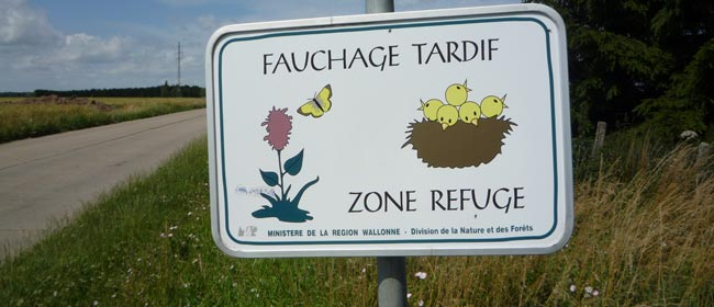La gestion des bords de routes
