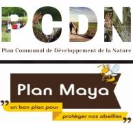 PCDN Maya