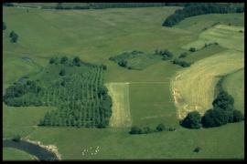 Vue aérienne Prés Thibaut en 2000 [copyright Duchesne Jacques]
