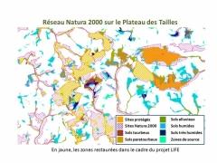 Réseau Natura 2000 au Plateau des Tailles et zones restaurées et protégées par le projet LIFE