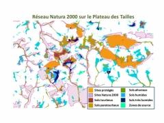 Réseau Natura 2000 au Plateau des Tailles