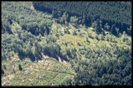 Vue aérienne Ry d'Oneux en 2000 [copyright Duchesne Jacques]