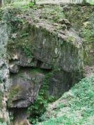 H3.2b - Végétation des fentes et crevasses des rochers calcaires légèrement ombragés
