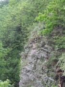 H3.1b - Végétation des fentes de rochers siliceux moins acides, dolomitiques